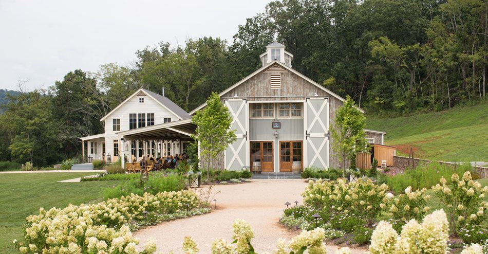 Charlottesville VA Winery & Vineyard | Wine Tastings & Tours | Pippin Hill Farm & Vineyards
