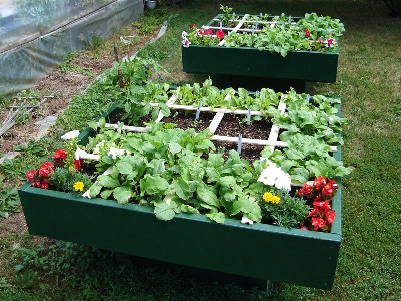 Square Foot Gardening An Easy Way to Grow Your Own Food Square