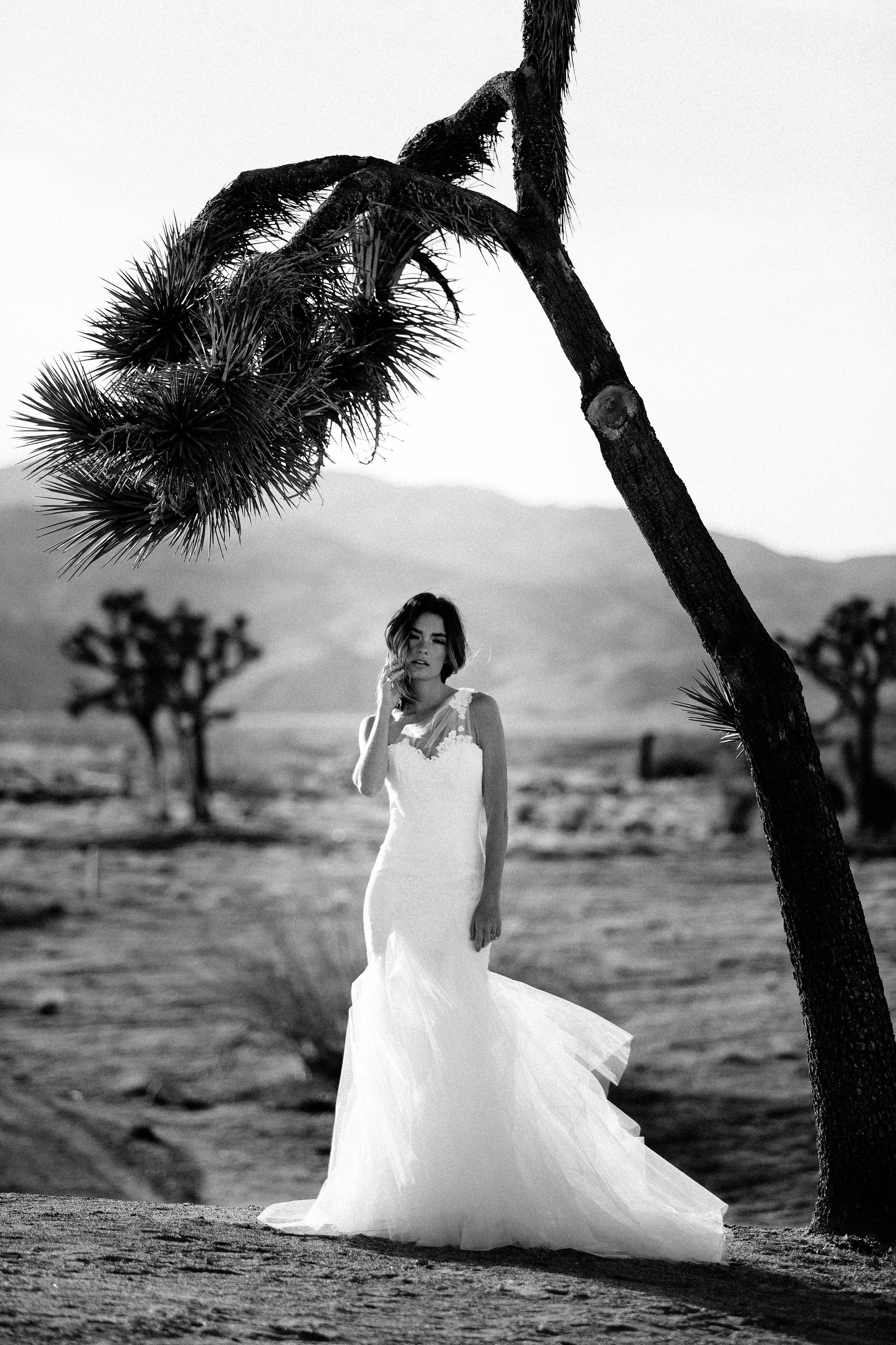Dress: Astrid & Mercedes Artemisia | Photographer: Tim Melideo | HMU: Colbie Wilson | Florals: Morgan Wynia | Model: Quigley | Venue: Homestead Modern