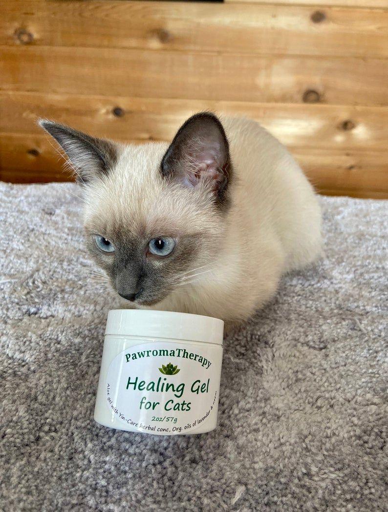 Natural Healing Gel for Cats, Cat healing salve, wound gel