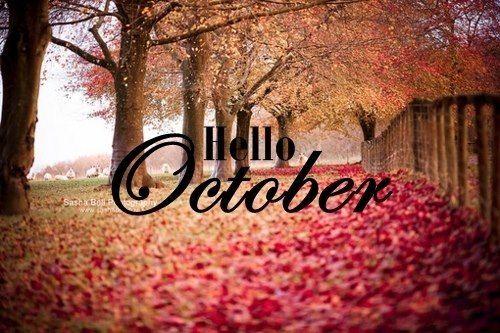 Merveilleux Hello October