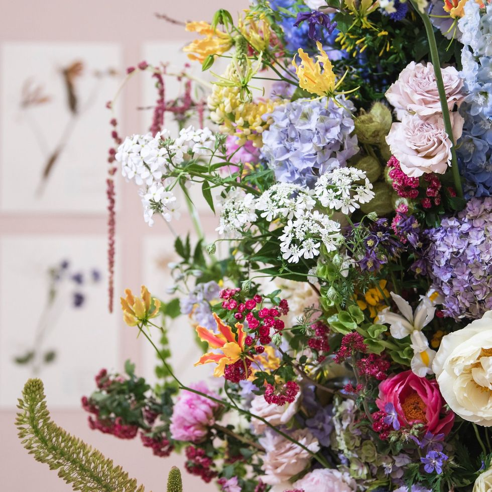 'The Living Herbarium' floral display by Gail Smith