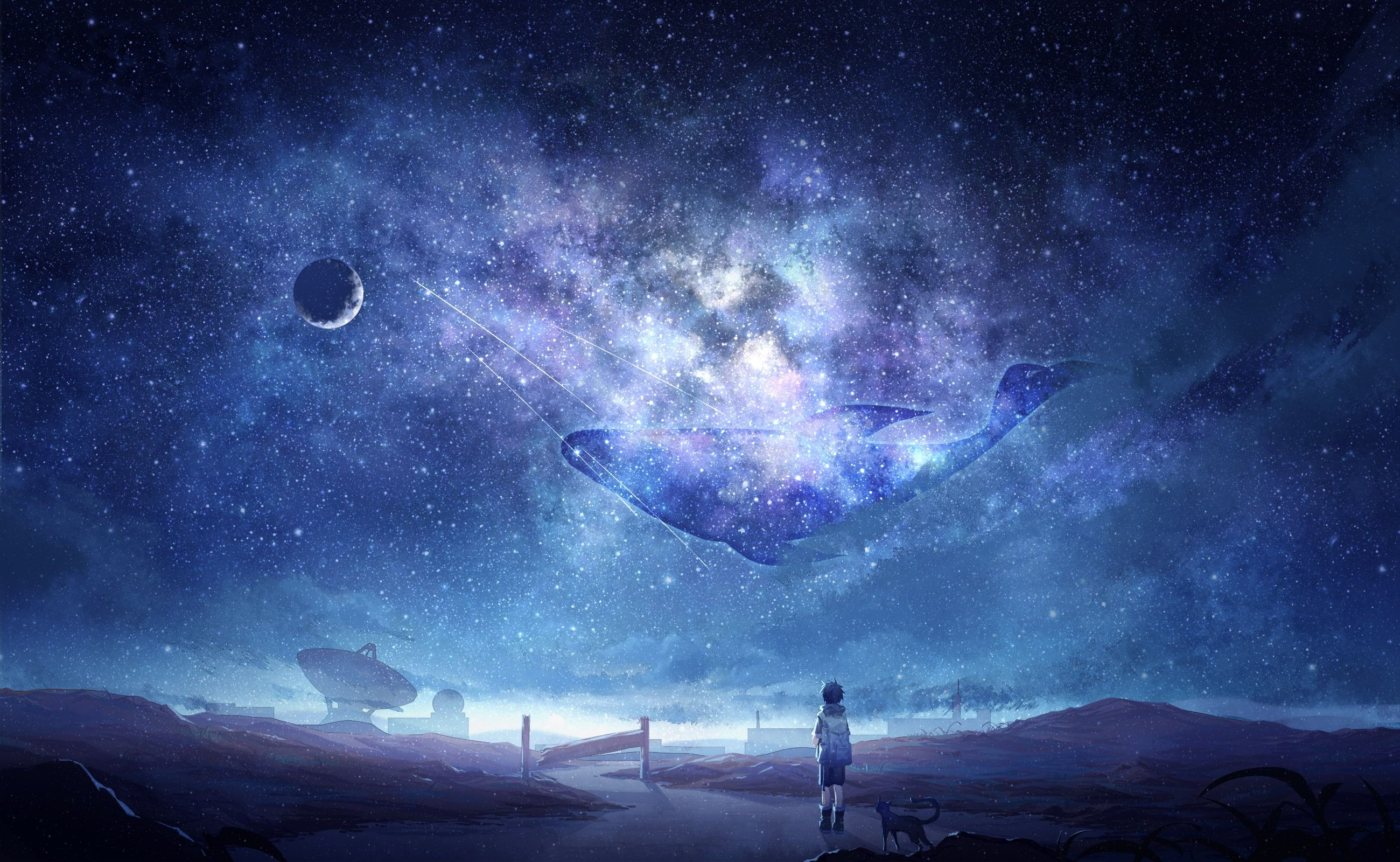 Anime Sky Milky Way Stars Anime Boy Dog Moon Whale Galaxy Anime 2k Wallpaper Hdwallpaper Desktop Anime Scenery Anime Galaxy Sky Anime