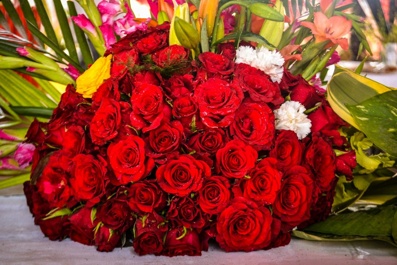 Specialities Http Www A1kolkataflowers Com Same Day Flower Delivery Flower Delivery Rose Flower