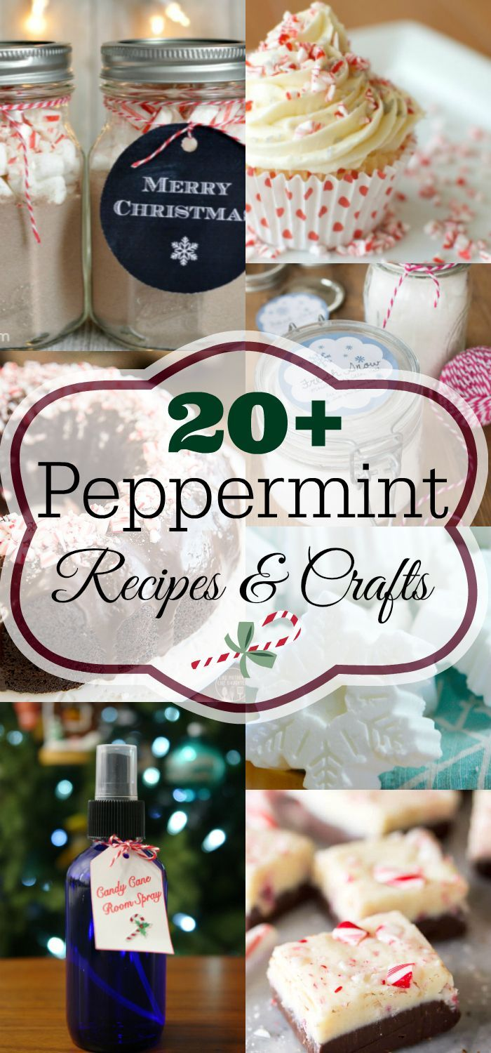 Peppermint everything recipes and crafts peppermint food gifts