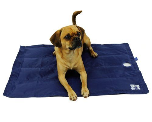 Body Glove Pet 36 by 27Inch Cooling Mat Large Blue