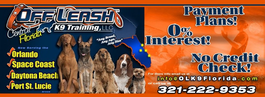Psl Baner K9 Dog Training Melbourne Florida Daytona Beach