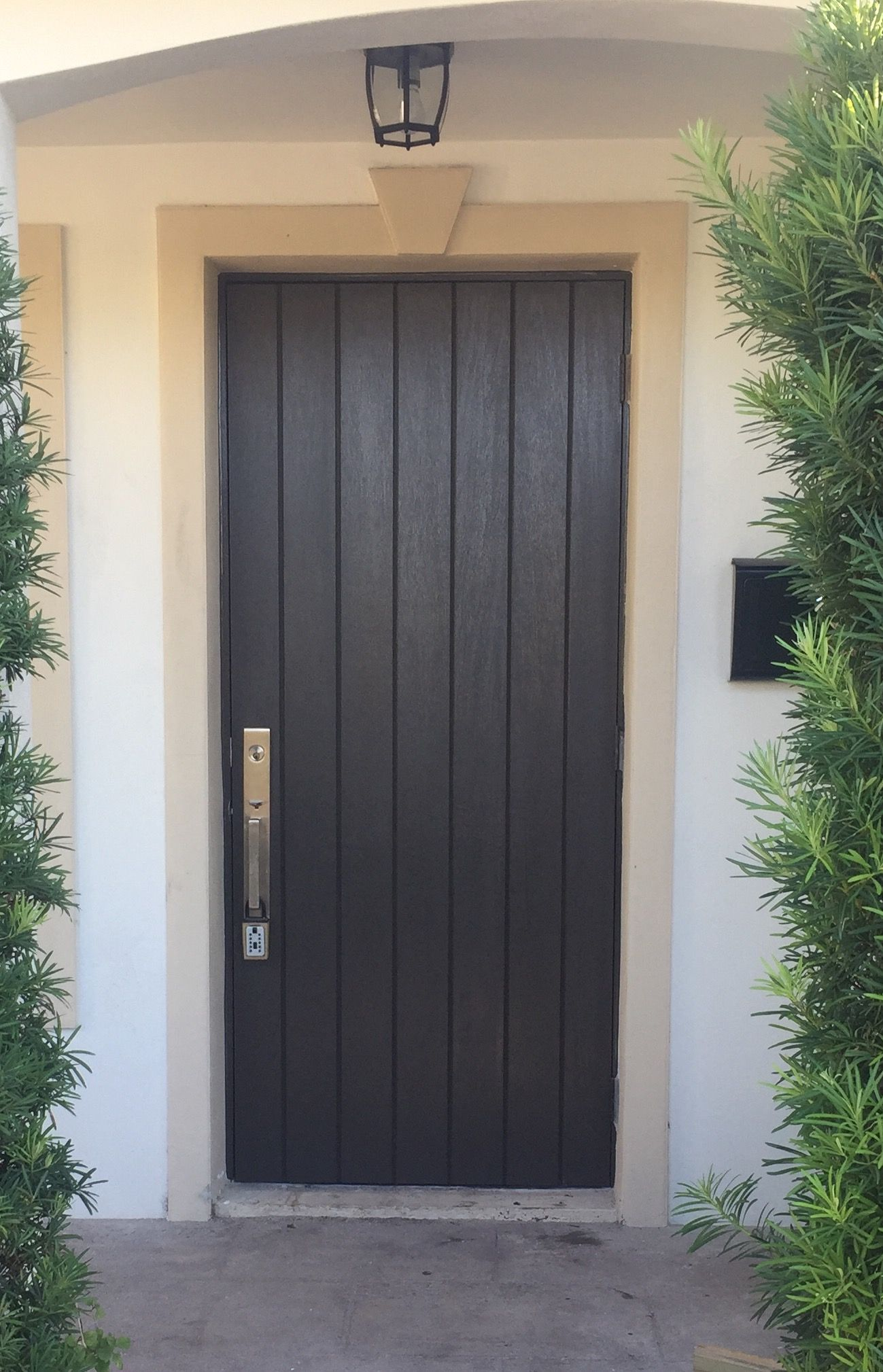 front door painted with black fox sherwin williams the perfect black goes great with bronze. Black Bedroom Furniture Sets. Home Design Ideas