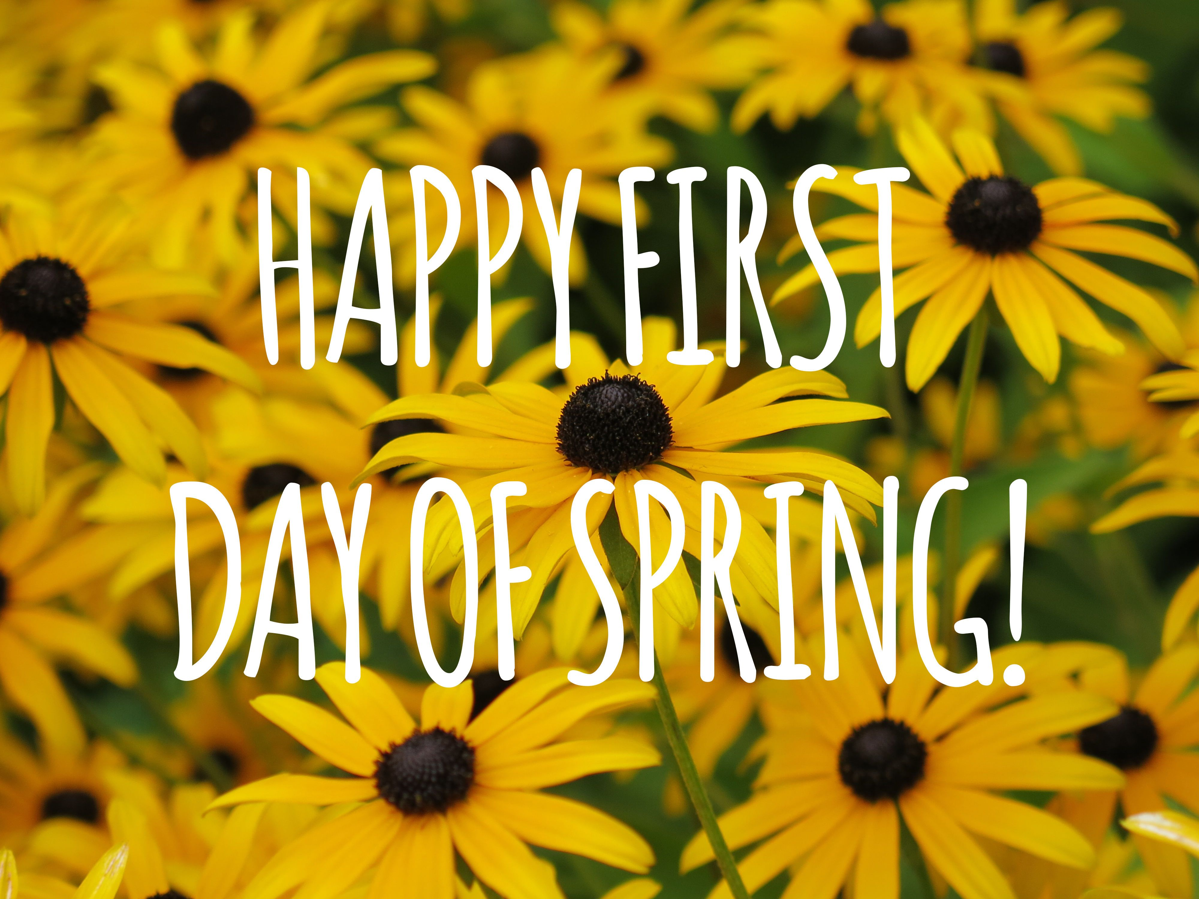 Happy First Day Of Spring Spring Spring Quotes Happy Spring Hello Spring Hello Spring Quotes Happy Spring Day First Day Of Spring Spring Images