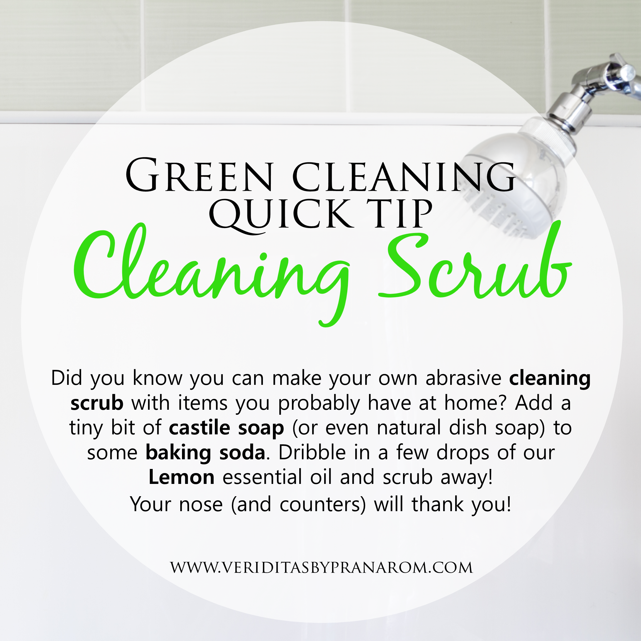 Quick Green Cleaning Tip Of The Day With Images Natural Dish