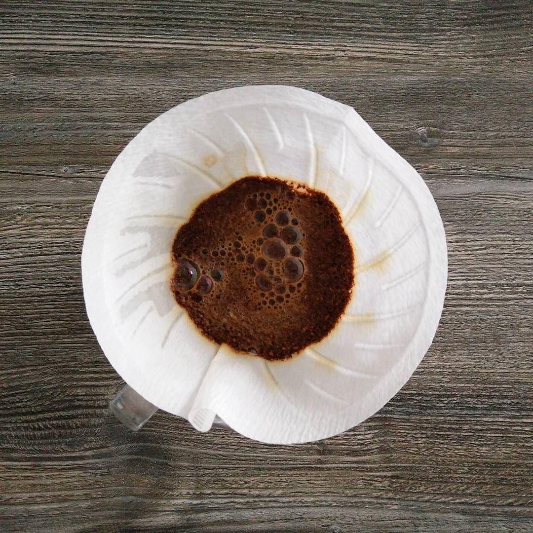 Monday morning bloom. Nach einem entspannten Wochenende kann es jetzt wieder losgehen - nach einen Kaffee natürlich!