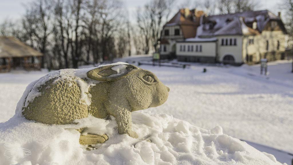 Sleza Slaski Olimp Masyw Slezy Hasajace Zajace Outdoor Trekking Survival