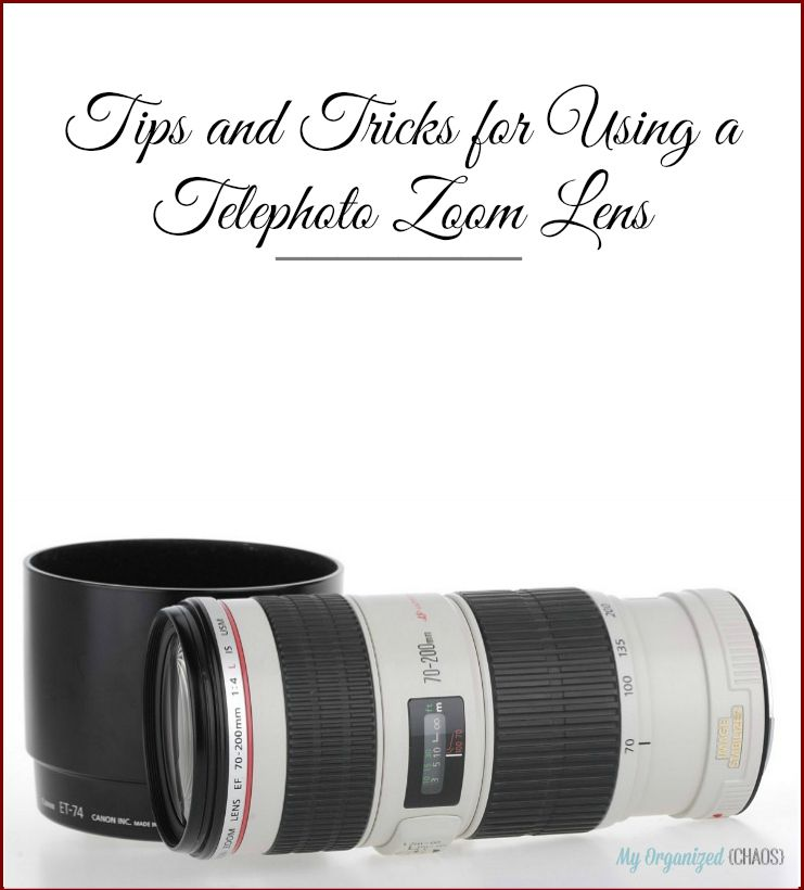 Tips and Tricks for Using a Telephoto Zoom Lens | Telephoto zoom ...