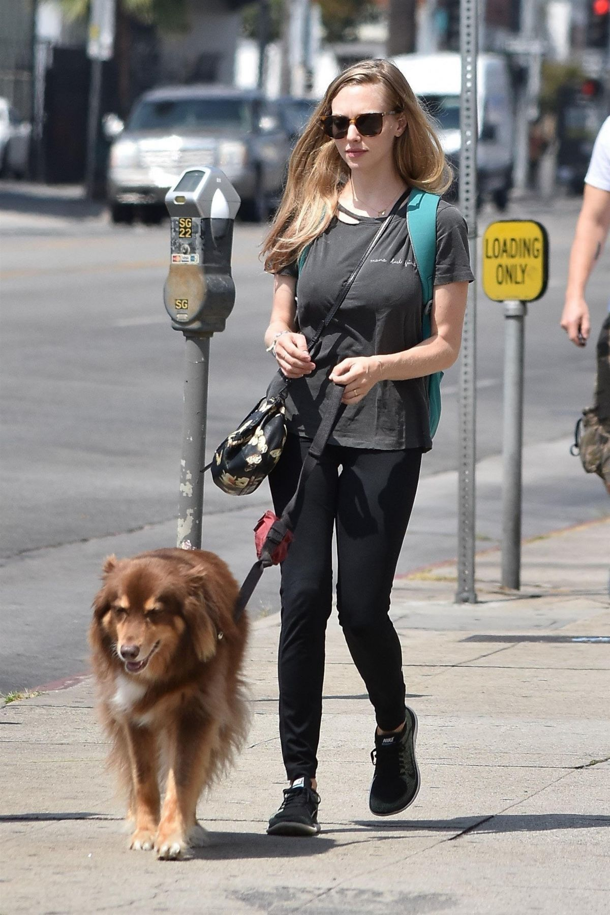 amanda-seyfried-out-for-lunch-at-cheebo-in-west-hollywood-08-23 ...