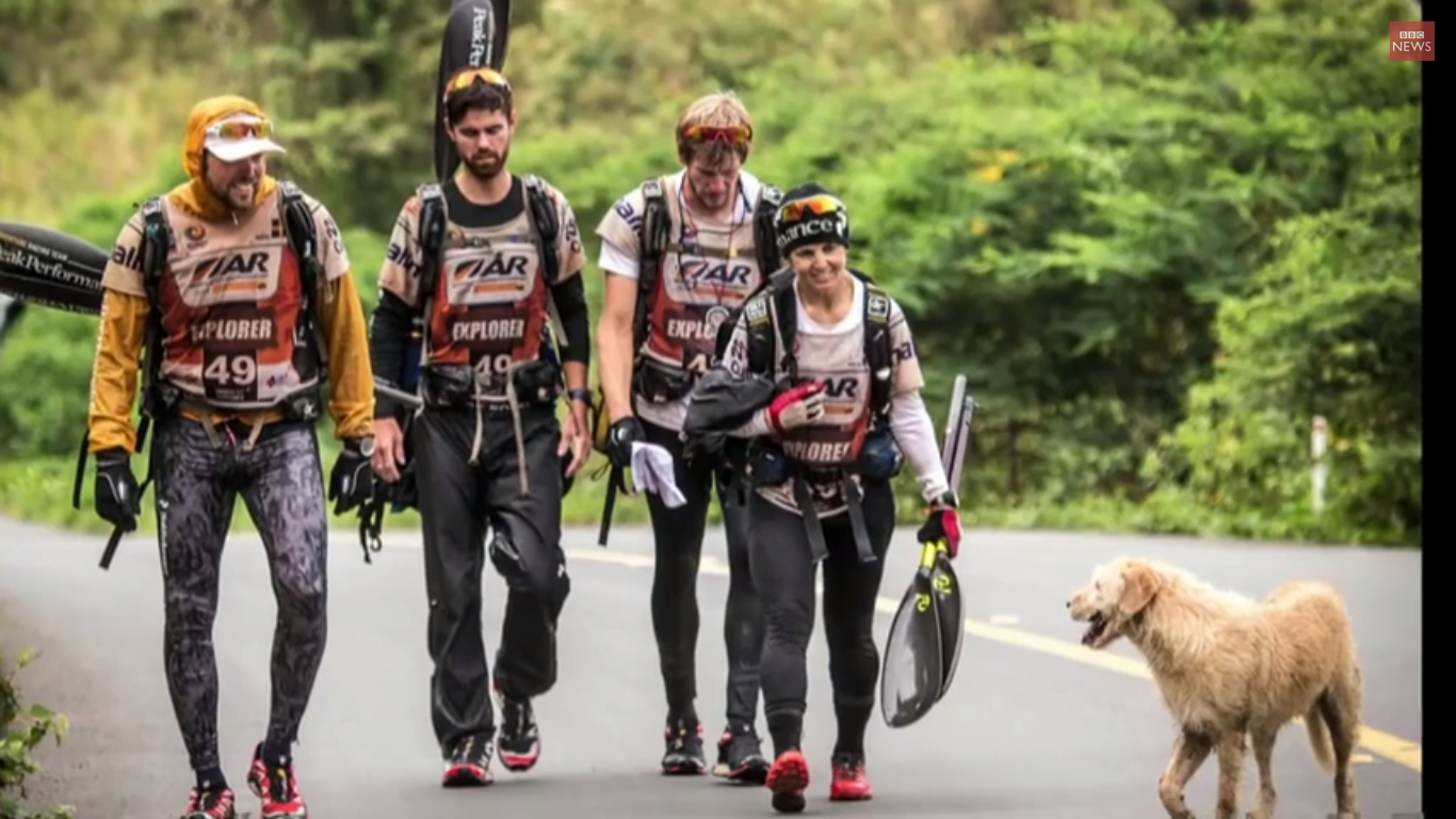 Stray dog travels 400 miles with racing adventurers