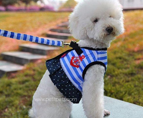 Arnes y correa estilo nautico para perrita, talla S perfecto para paseos frente al mar, o salidas especiales.  10,50 € boutique online con variado armario para perros