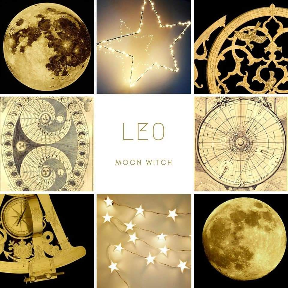 Pin by Angel Liborio on L E O S | Zodiac, Zodiac signs, Leo