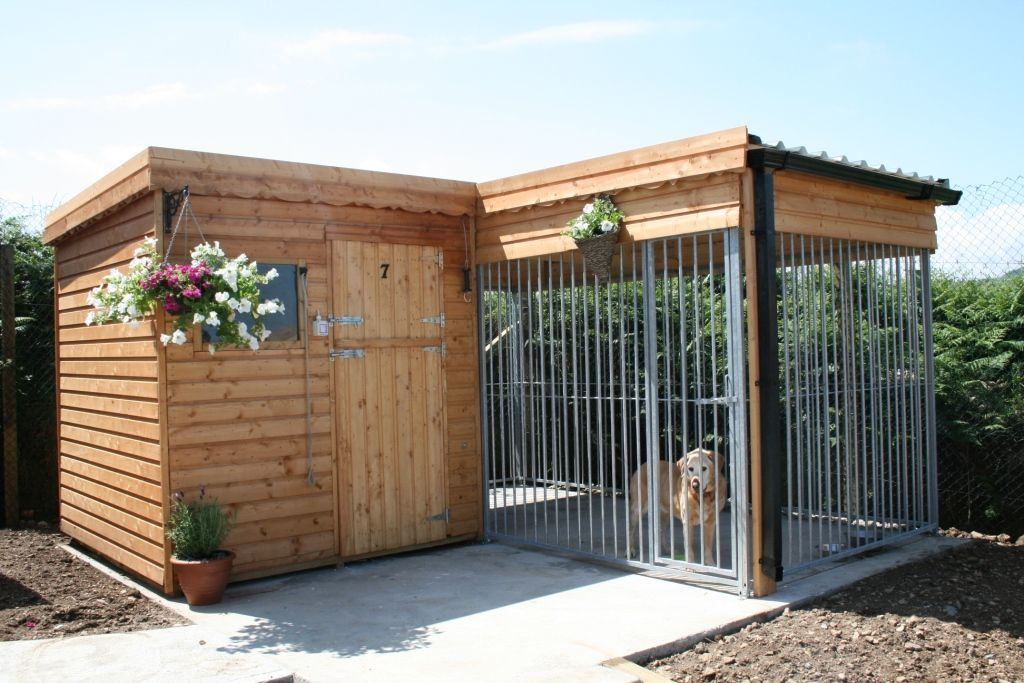 Outdoor Dog Kennel Outdoor Dog Kennels | ...