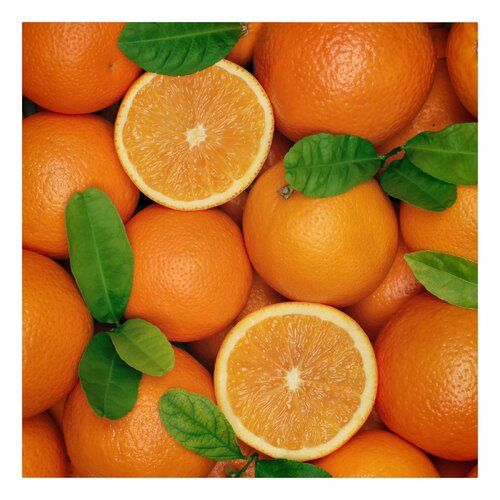 Juicy Oranges Photographic Print on Canvas East Urban Home Size: 60cm L x 60cm W