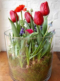 #DIY indoor garden centerpiece -- great Valentine's Day decoration