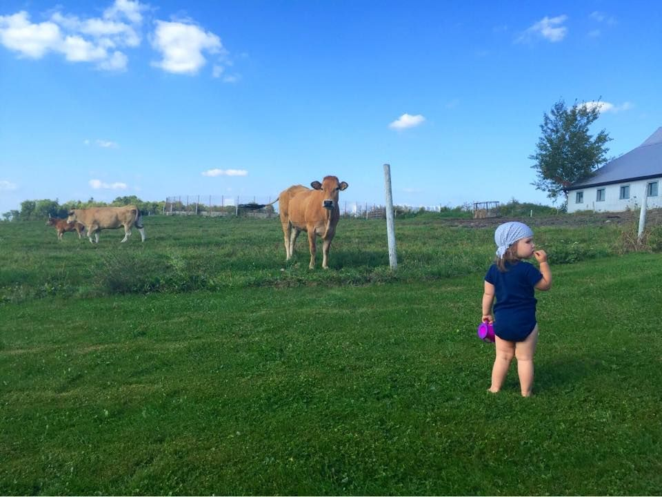 Chez papi et mamie à la ferme - Agrimom - vie à la ferme - #Agriculture