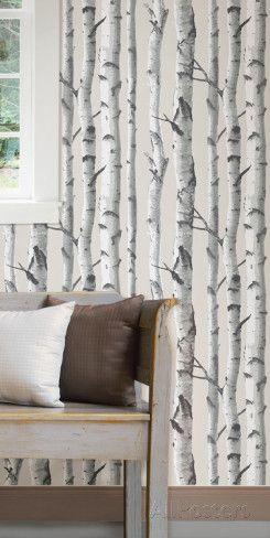 Birch Tree Peel Stick Wallpaper Wall Decal At Allposters Com Birch Tree Wallpaper Home Decor Home