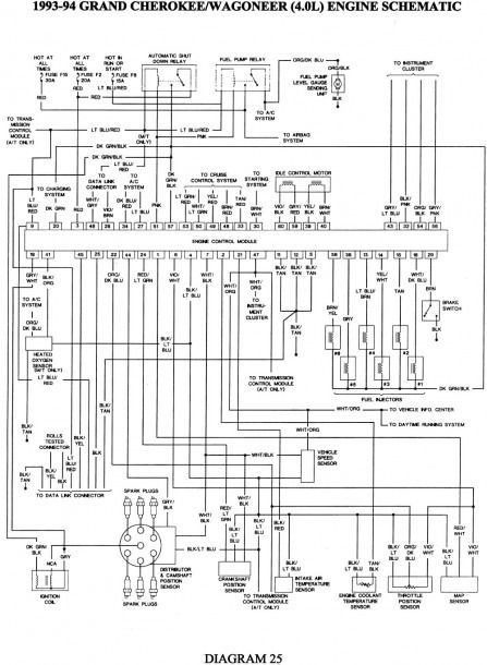 Diagram  1998 Jeep Wrangler 4 0 Injector Wiring Diagram