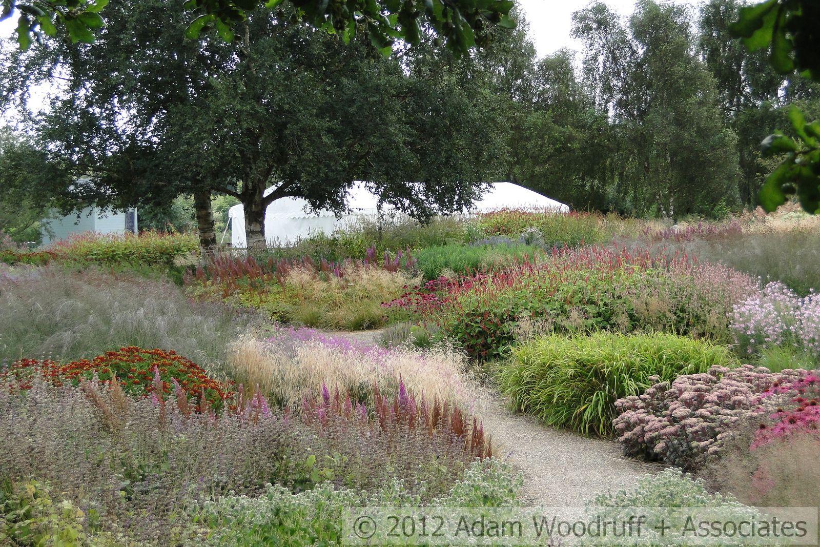 Pensthorpe Nature Reserve 034 Ornamental Grasses Landscape Nature Reserve