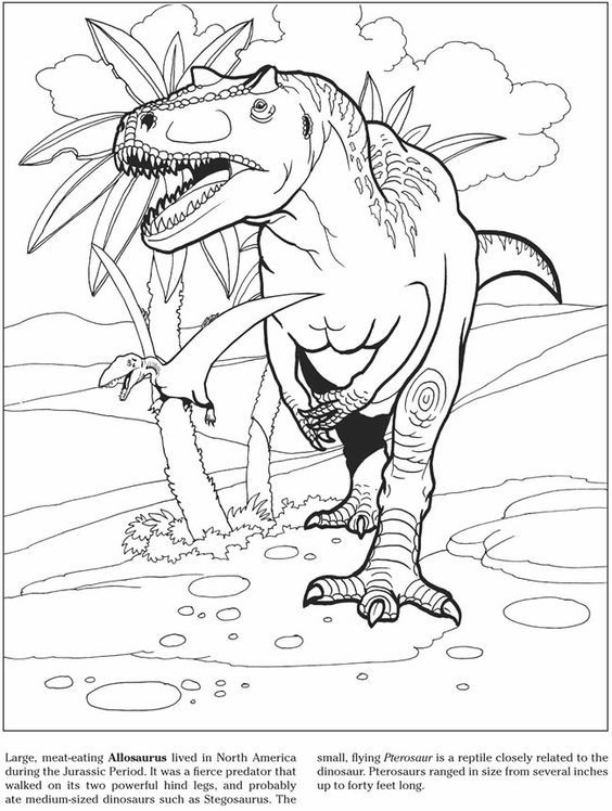Allosaurus Dinosaur Coloring Pages Coloring Pages Dinosaur Coloring