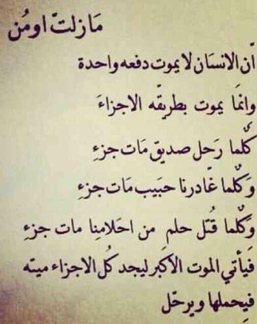 موت بطريقة الأجزاء Words Quotes Thoughts Quotes Funny Arabic Quotes