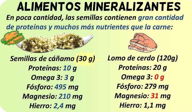 Alimentos Ricos En Fosforo Y Magnesio Alimentos Lomo De Lomo De Cerdo