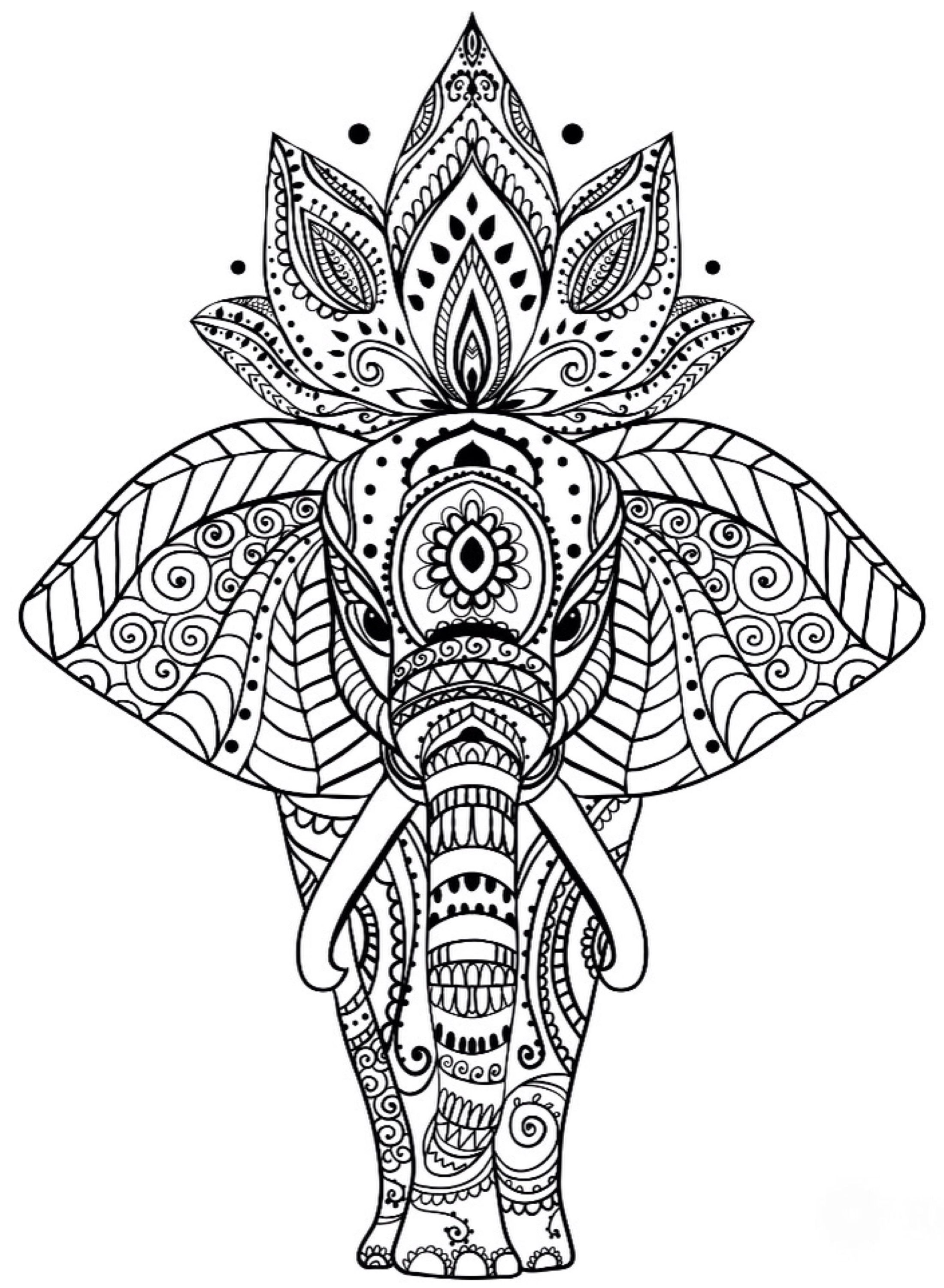 Elefante Zentangle Colorear Mandalas Hindues Imagenes De