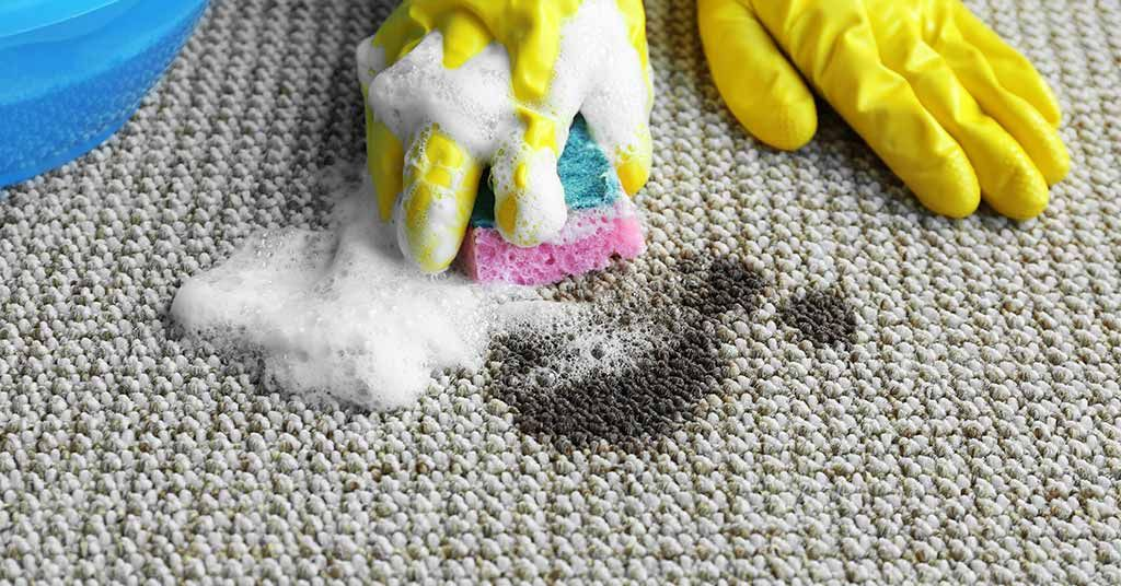 Remove Grease From Carpets