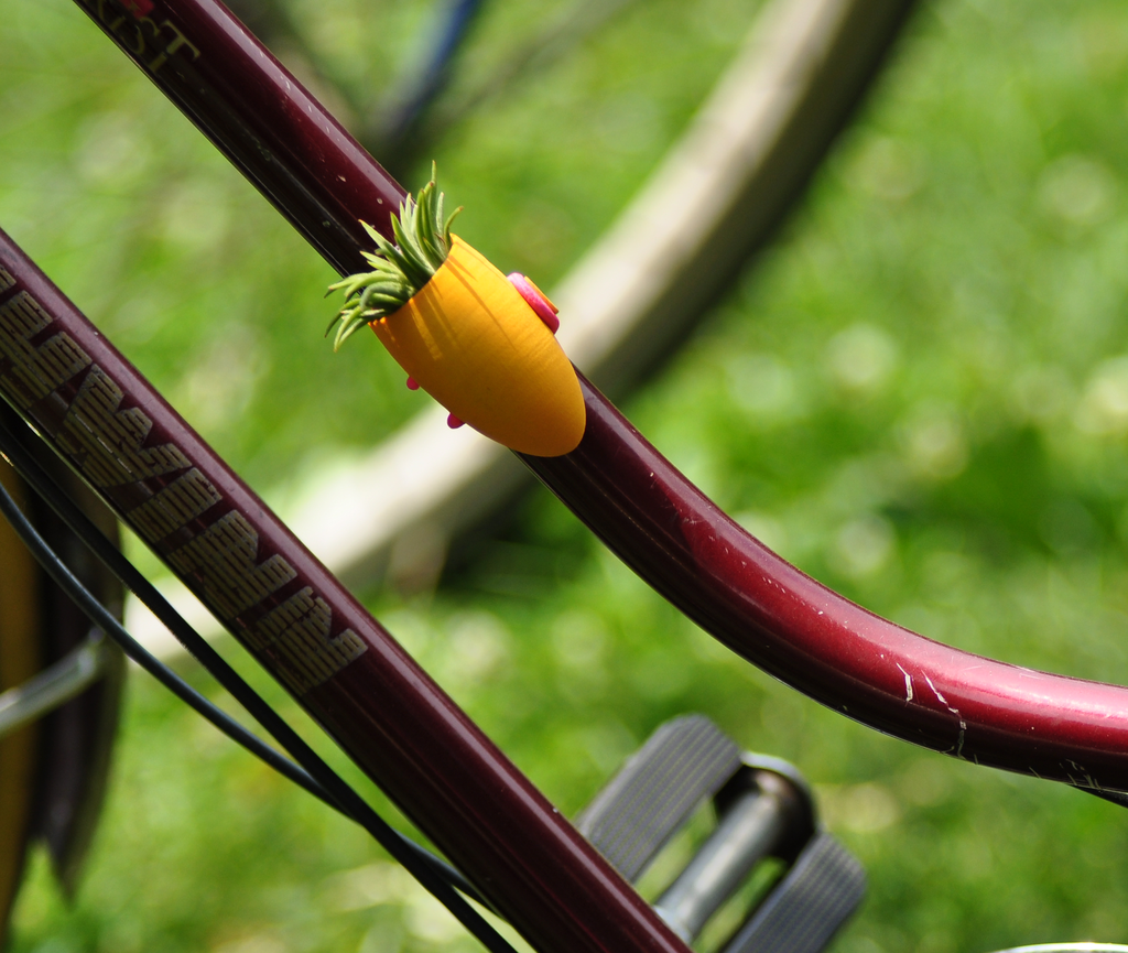 Bicycle Garden Planter @Micaela Warde Ikemiya
