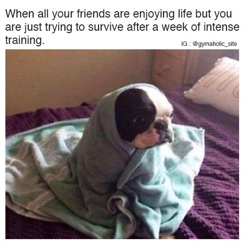 When All Your Friends Are Enjoying Life Funny Pictures Funny Humor