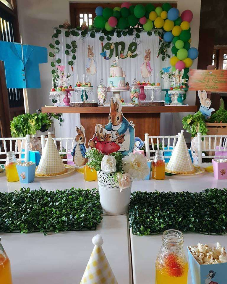 Peter Rabiit Birthday Party Ideas 1st birthday party for