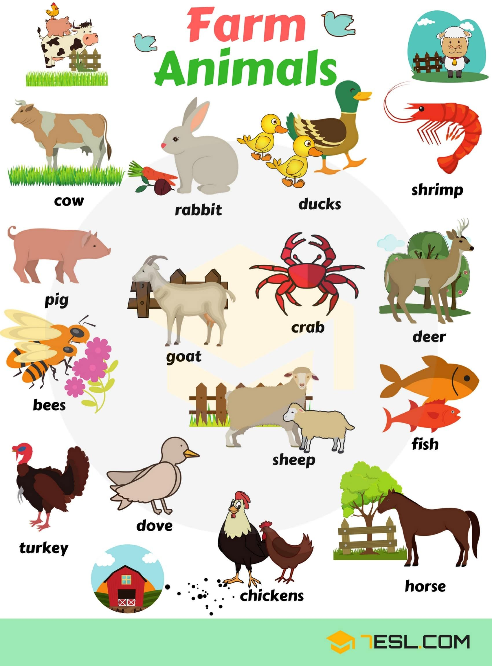 Farm Animals List Domestic Animals Names With Pictures 7 E S L Animals Name In English English Vocabulary Learning English For Kids