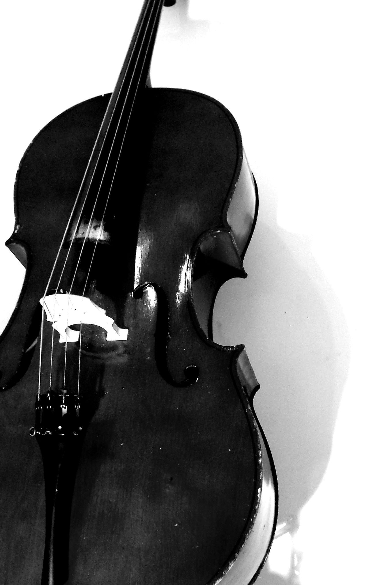 Group Of Cello Wallpaper
