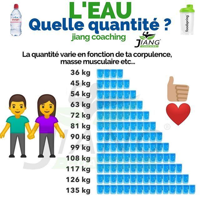 l u0026 39 eau est surtout la seule chose importante  u00e0 avoir dans son organisme  elle repr u00e9sente plus de