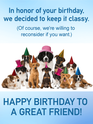 Classy Or Not Funny Birthday Card For Friends Birthday Greeting Cards By Davia Happy Birthday Buddy Happy Birthday Dog Birthday Greeting Cards