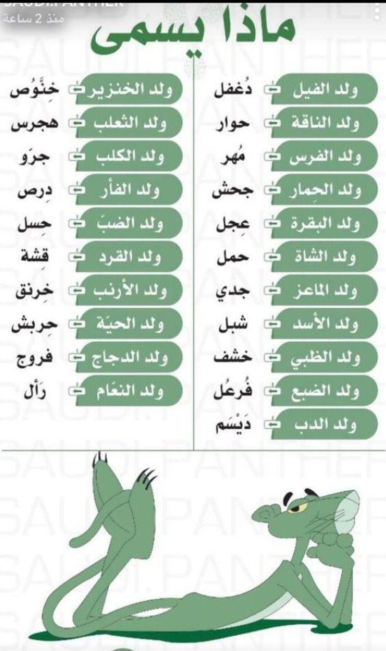 Arabic Practices Arabic Language Learning Arabic English Language Learning