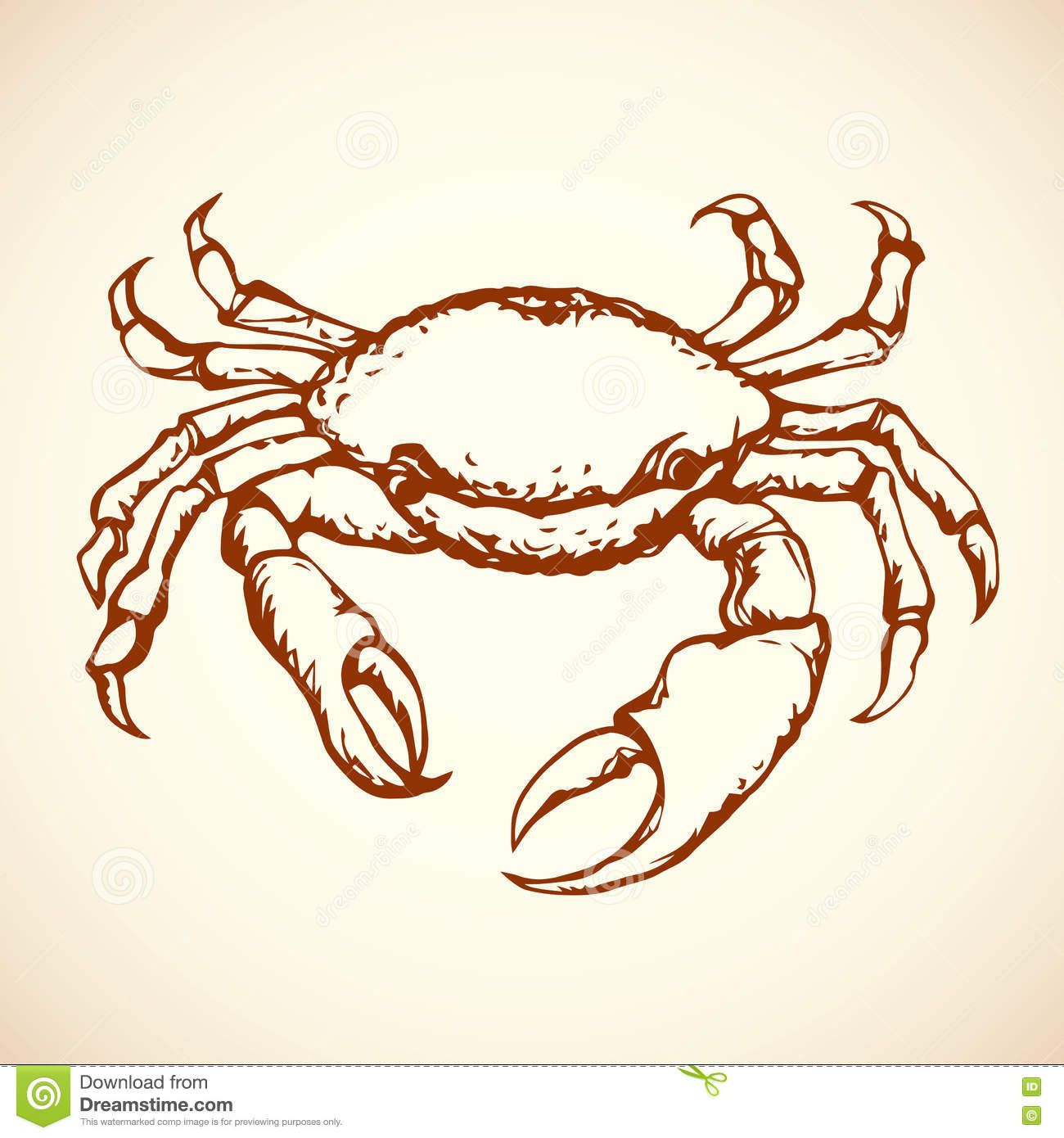 Crab Vector Drawing Illustration About Animal Aquatic Arthropod Crustacean Engraving Cartoon Cooking Claw Delicious Del Vector Drawing Crab Drawings