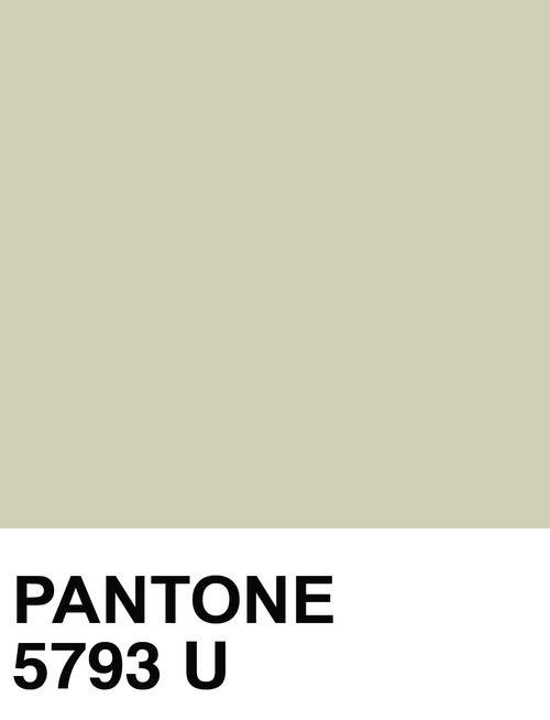 Pantone 5793 U Pantone Color Swatches Pantone Color