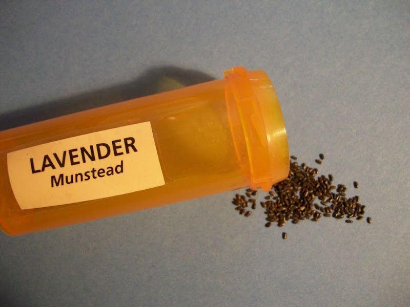 12 Ways to Reuse Your Old Prescription Bottles