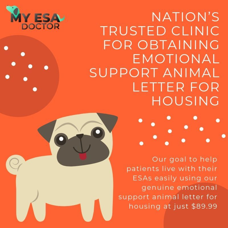 Nation S Trusted Clinic For Obtaining Emotional Support Animal Letter For Housing Emotional Support Animal Animal Letters Emotional Support