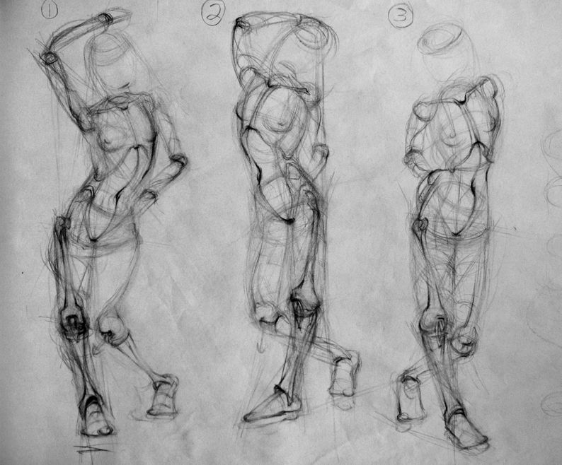 Rebecca Kimmel - Student - Drawings 05 | Анатомія. | Pinterest ...
