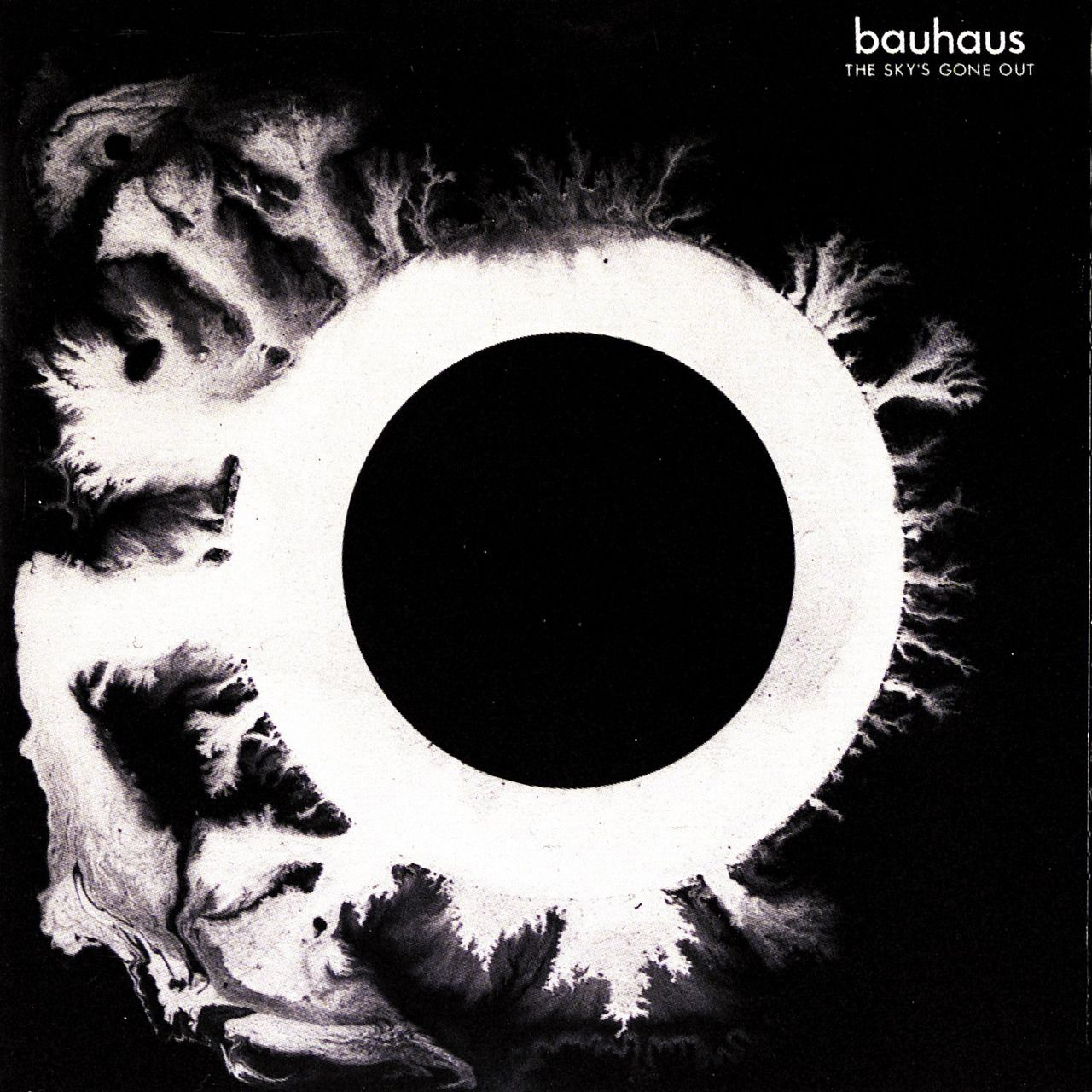 Vinyl Artwork Bauhaus The Sky S Gone Out 1982 Cover Painting