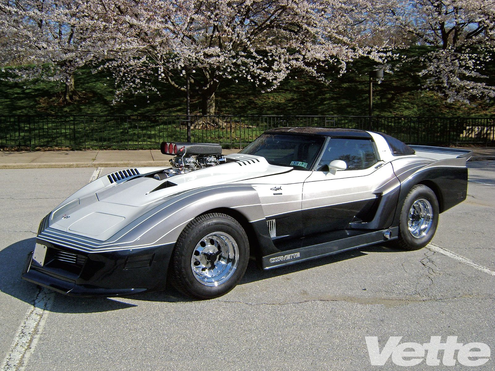 1976 greenwood corvette c3 daytona muscle cars pinterest corvettes corvette c3 and. Black Bedroom Furniture Sets. Home Design Ideas