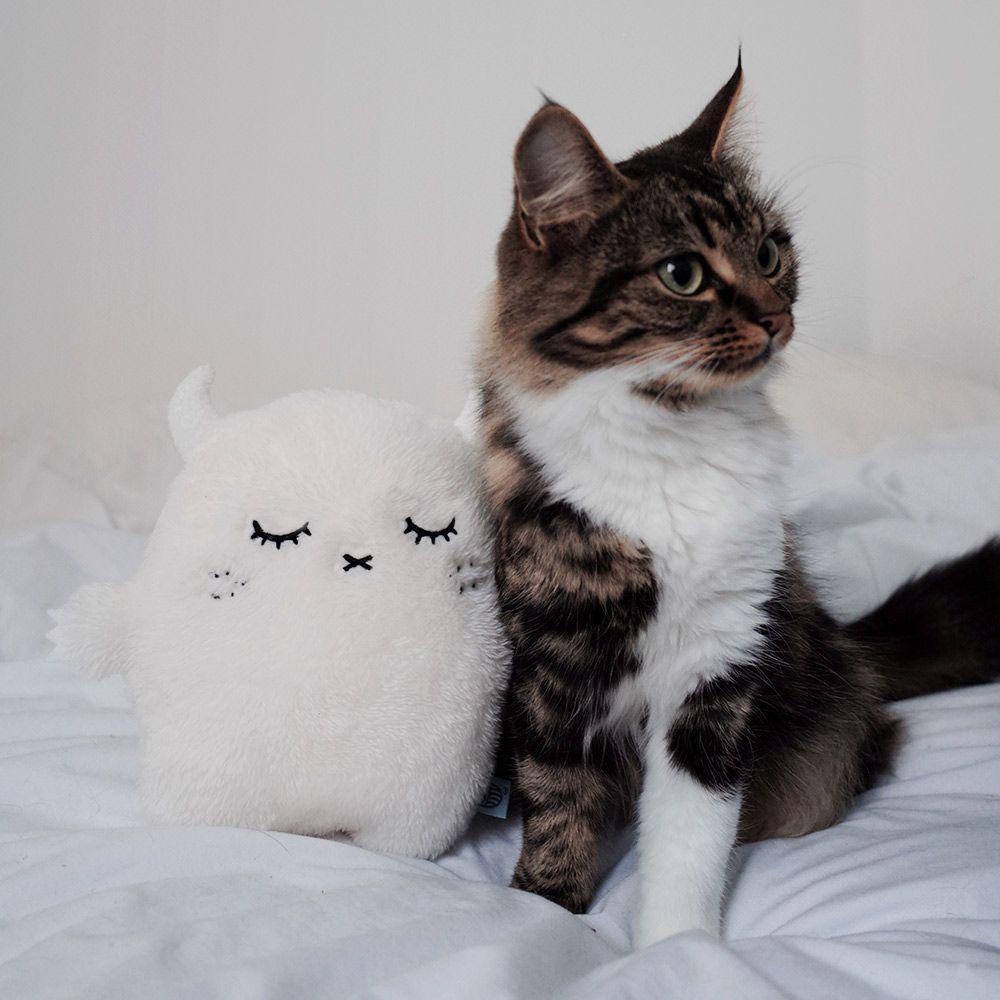 Ricepuffy White Cushion Pet Toys Cat Love Cute Toys