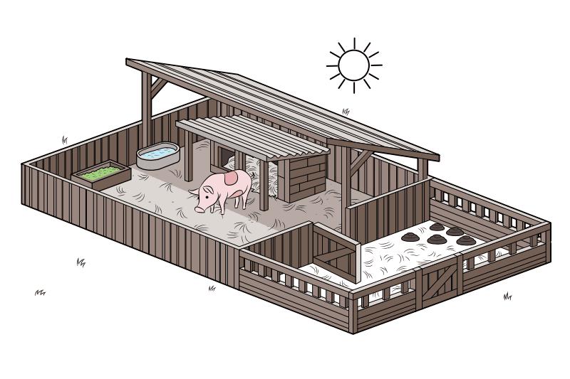 How To Set Up A Pig Pen Pig Farming Raising Pigs Pig House